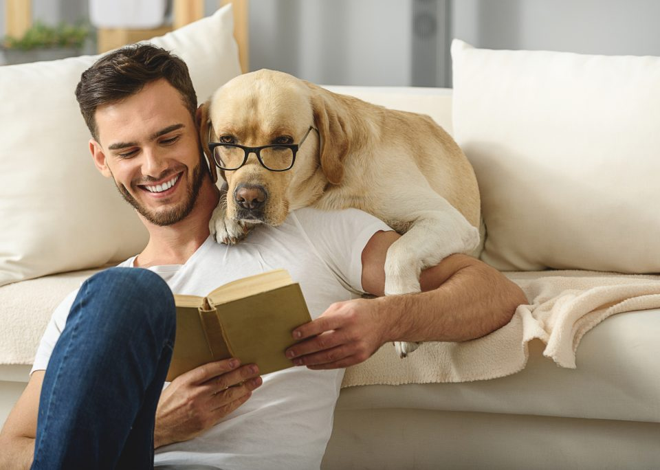 Best Upholstery for Pets